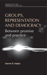 Groups, Representation and DemocracyBetween Promise and Practice